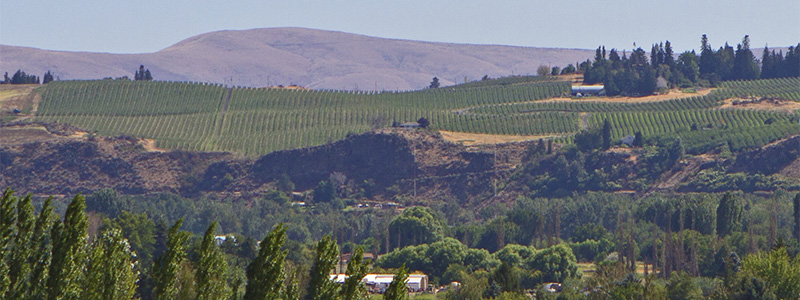 Picture of Yakima Valley.